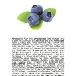 Ingredientes Naturais: Mirtilo (Blueberry)