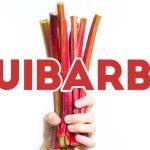 Geleia de Ruibarbo