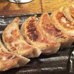 Gyoza Caseiro: Pastel Chinês